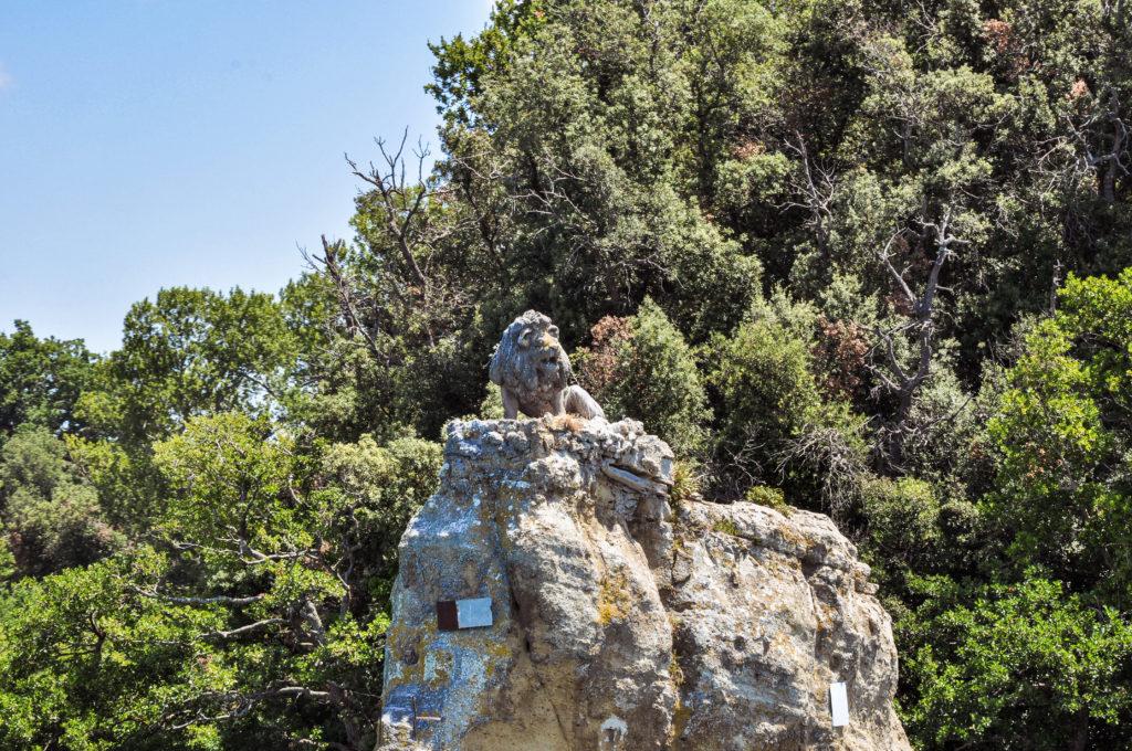 leone isola bisentina