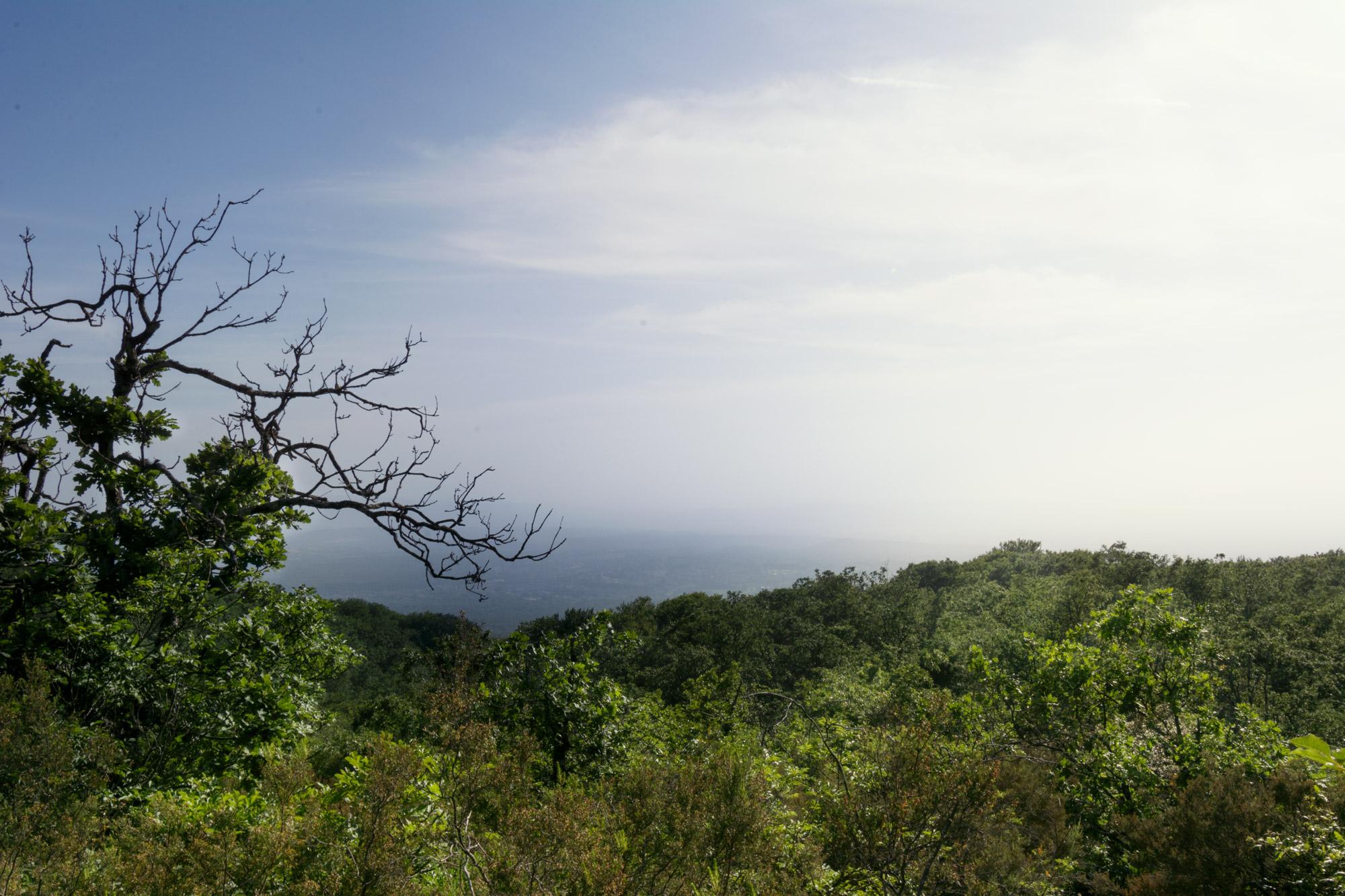 panorama dalla zona elcetella sul monte fogliano